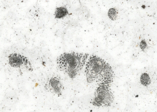 possum_handprint