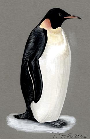 the penguin history of economics hdx2cpj